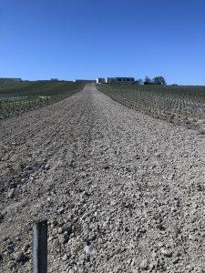 Extérieur. Photographie d'une parcelle de vignes au repos : Les plants sont retirés et la terre retournée. Elle est bordée de vignes classiques